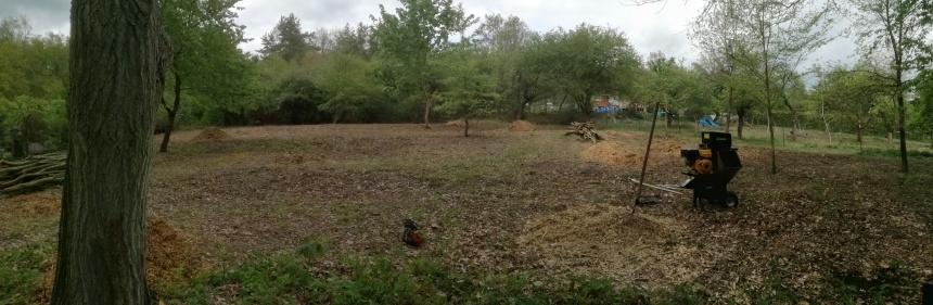Postupný návrat k původnímu stavu zahrady