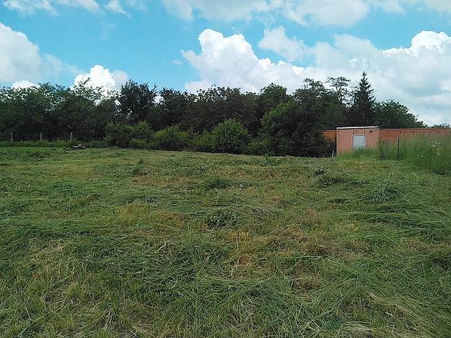 Pohled na již posekaný stavební pozemek