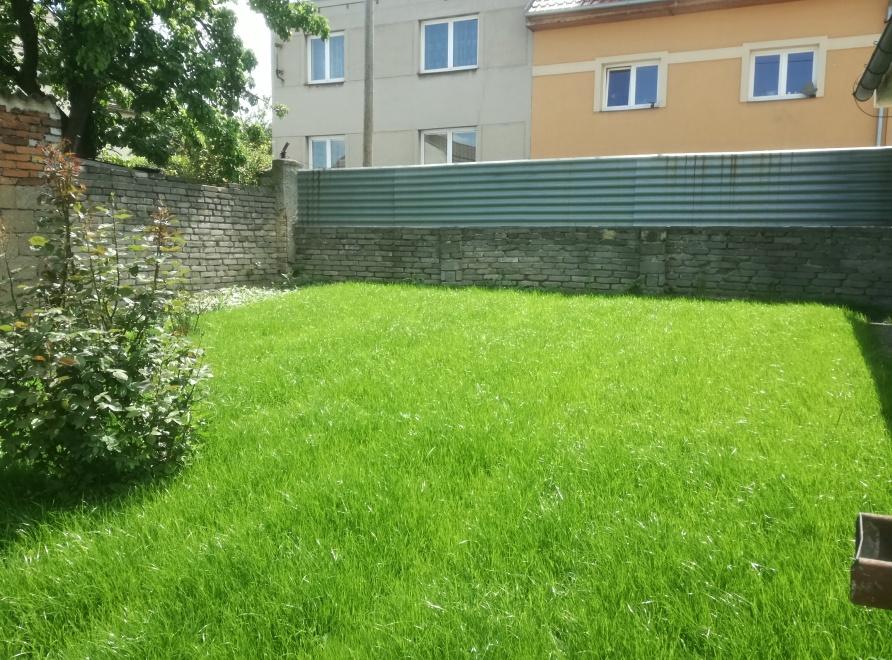 Rekultivace zahrady a zeleninových záhonů. Výsev nového trávníku.