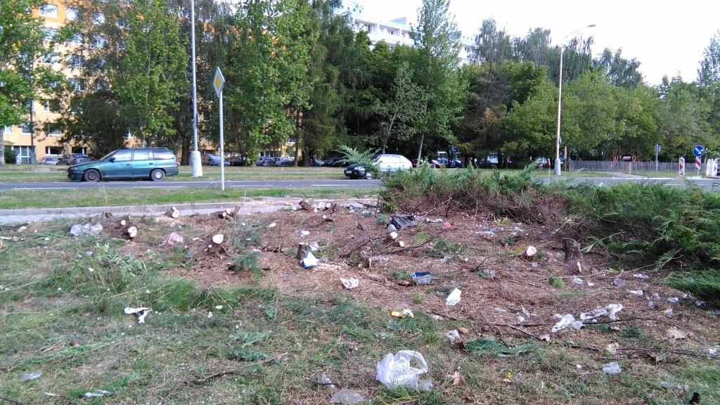 ...po vyřezání větší části dřeviny na nás čekalo nemilé překvapení v podobě hromady odpadků :-(