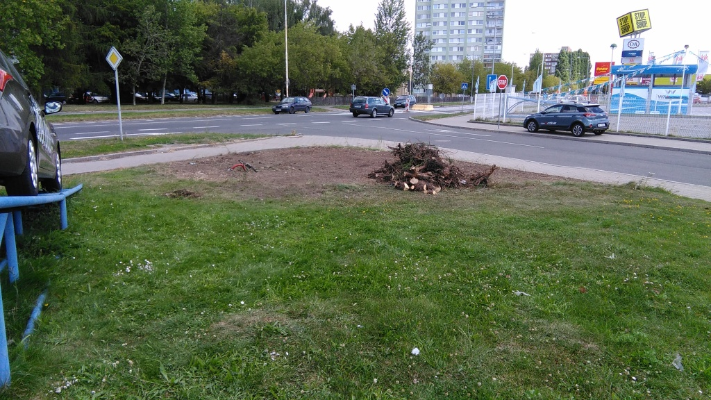 ...místo je již vyčištěno a připraveno k výsevu trávníku