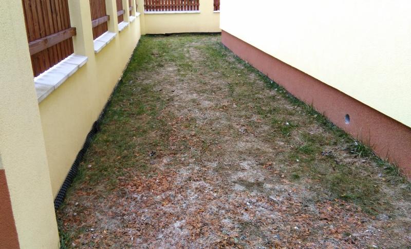 Zahrada před zahájením prací