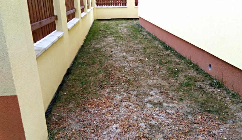 Stav zahrady před započetím prací