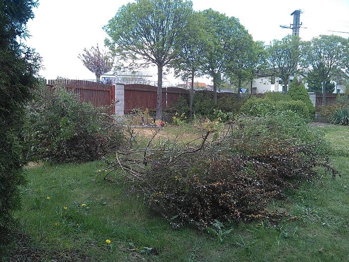 Dřevní odpad vzniklý po vyřezávce a prořezu dřevin...
