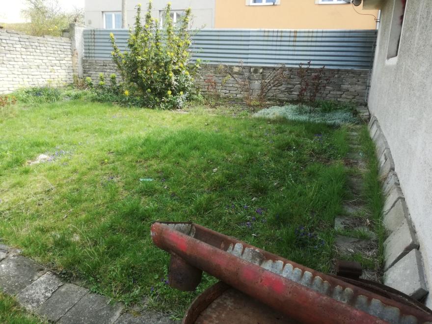 Neudržovaná zahrada před rekultivací
