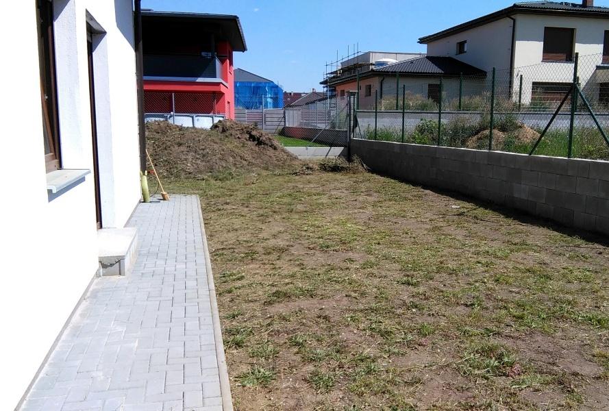 Pohled do zahrady před rekultivací