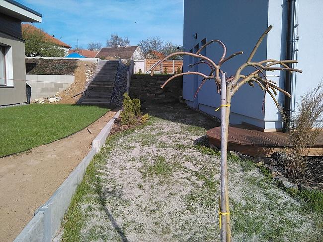 Travnatá plocha po vertikutaci je již zapískovaná